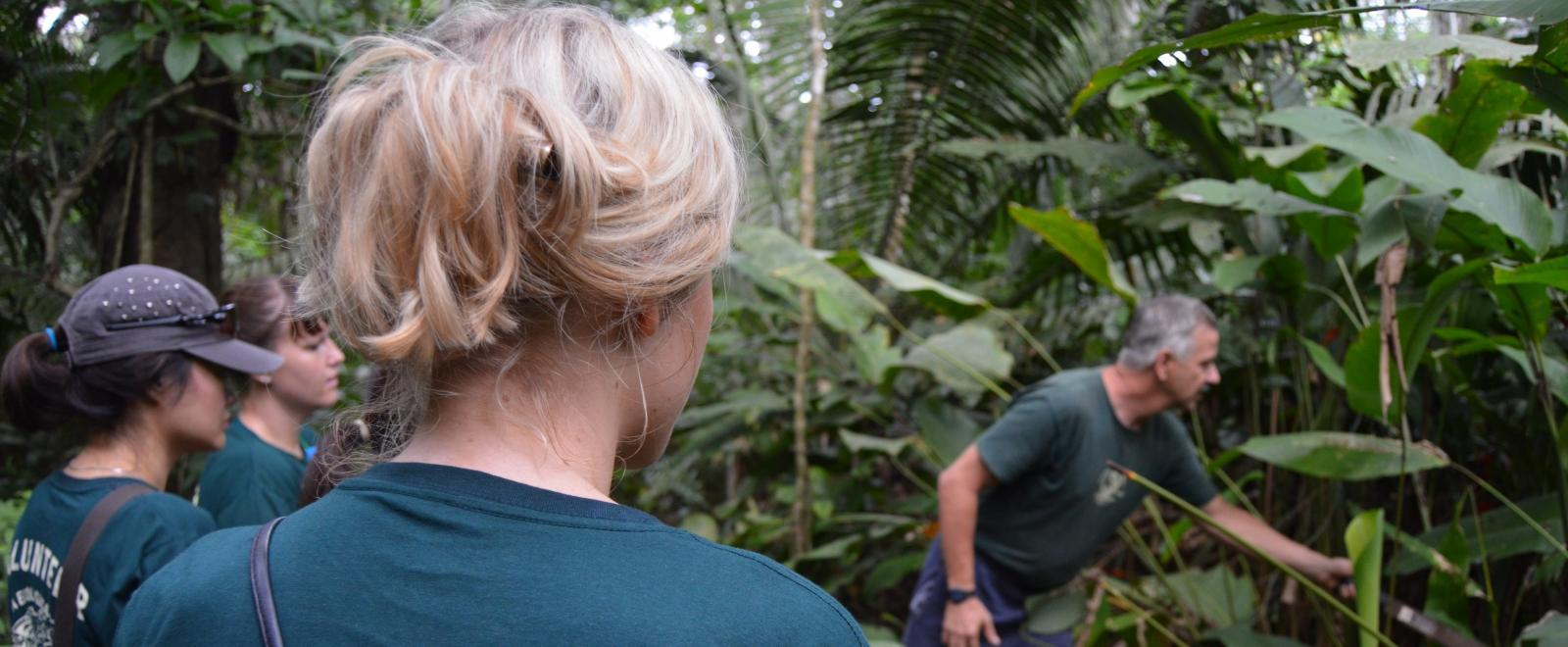 A staff member shows teenagers different species during rainforest conservation volunteering in Peru